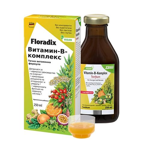 Floradix Витамин В комплекс Билково-плодов еликсир за повече енергия х250 мл